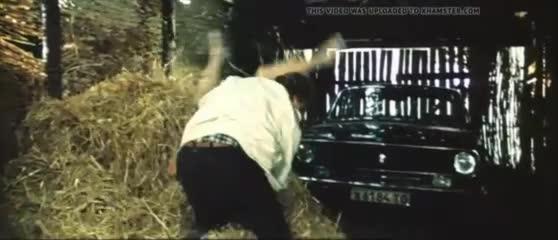 ирина шмелева акселератка 1987 переодевается на сеновале