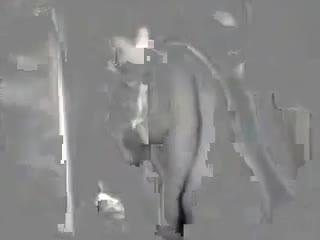 Порно с ссср 1985 года бесплатно с мобильного