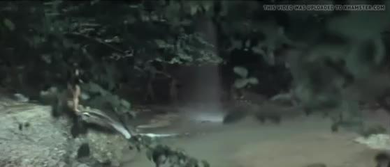 Чегемский Детектив (1986) девушки голые в воде