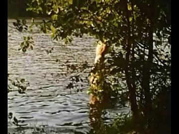 Наталя Суркова голая по лесу - Родник (1990)